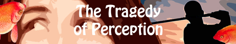 The Tragedy of Perception